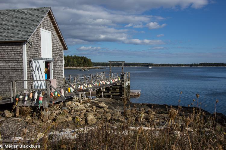 Maine Audobon Dock