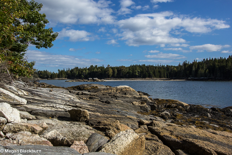 Maine Audobon Walk